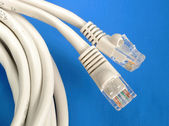 Close up view of some computer Ethernet cables — Stock Photo