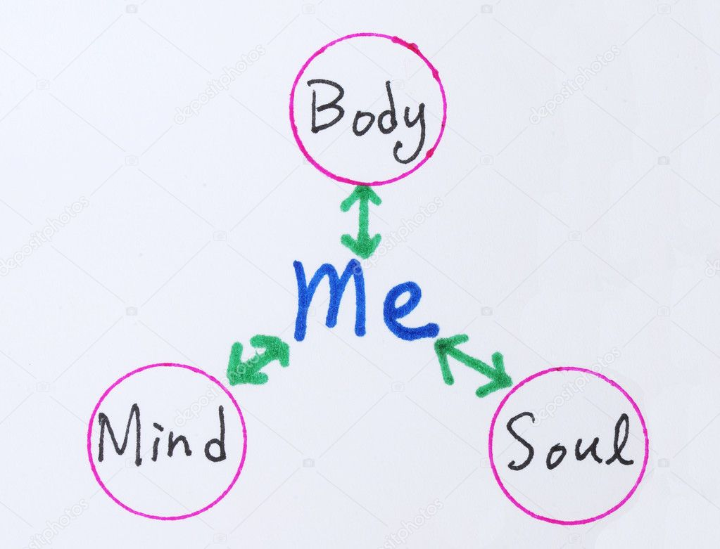 an introduction to the relationship between the body and the mind Free essay: many philosophers have developed many branches of philosophy to study the nature of mind and its relationship to body from the conversation, the.
