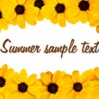 Decorative sunflower greeting card — Stock Photo #6258601