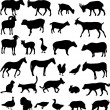 Vector de stock : Farm animals