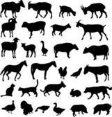 Gårdens djur — Stockvektor