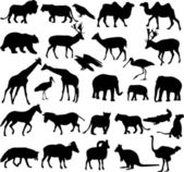 Animals silhouettes — Vector de stock