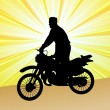 Motorcyclist  - vector — Stockvectorbeeld