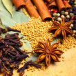 Oriental spices — Stock Photo