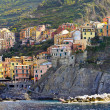 Manarola panorama — Stock Photo