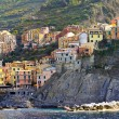 Manarola panorama — Stock Photo #5400568