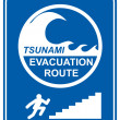 Stock Photo: Tsunami pedestrian