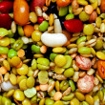 Fresh beans — Stock Photo