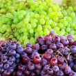 Two grapes — Stock Photo