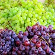 Royalty-Free Stock Photo: Two grapes