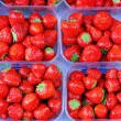 Fresh strawberries - Foto de Stock