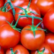 Tomatoes pile — Stock Photo