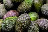 авокадо. — Стоковое фото