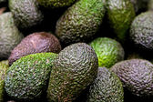 Avocadoes. — Stockfoto