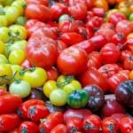 Tomato variety — Stock Photo #5772736