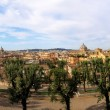 Rome west view - Stock Photo