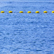 Sea buoy line — Stock Photo #5867592