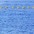 Sea buoy line — Stock Photo