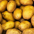 Royalty-Free Stock Photo: Potatoes