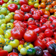 Tomato assortment — Stock Photo