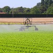 Irrigation sprinkler — Stock Photo
