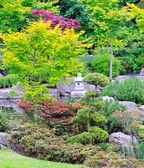 Kyoto garden — Stock Photo