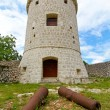 Stock Photo: Canons and castle