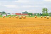 Rolling haystack field — Stock Photo