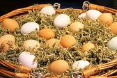 Jajka w koszyku — Zdjęcie stockowe
