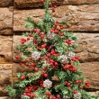 Christmas tree — Stock Photo #6644879