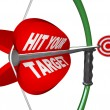 Hit Your Target - Bow and Arrow Aimed at Bulls Eye - Stock Photo