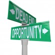 Decision at Turning Point of Dead End or Opportunity — Stock Photo