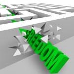 Freedom - Green Word Breaks Through Maze Walls — Stock Photo #5777818