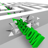 Freedom - Green Word Breaks Through Maze Walls — Stock Photo