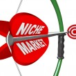 Royalty-Free Stock Photo: Niche Market - Bow and Arrow Aimed at Bulls Eye