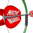 Niche Market - Bow and Arrow Aimed at Bulls Eye — Stock Photo
