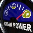 Brain Power Gauge Measures Creativity and Intelligence - Stock Photo