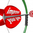 Stock Photo: Improve Your Game - Bow Arrow and Target Improvement
