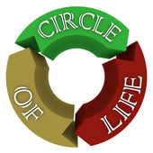 Circle of Life Arrows in Circular Cycle Showing Connections — Stock Photo
