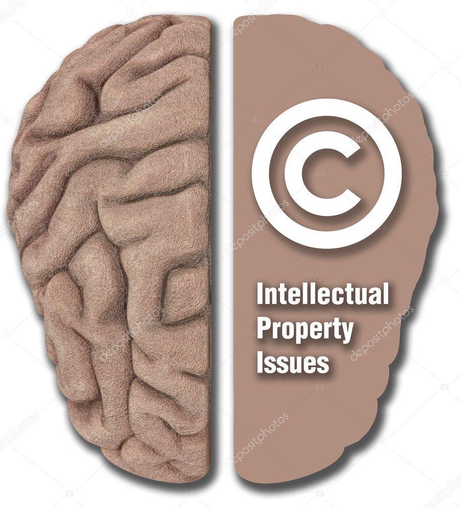Intellectual Property Copyright: Intellectual Property IP Asset Copyright