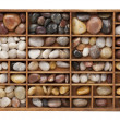 River pebbles in typesetter drawer — Stock Photo