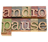 Andropause word in letterpress type — Stock Photo