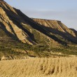 Stock Photo: Bardenas Reales