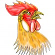 Rooster or cockerel sketch — Stock Photo #5560131