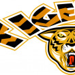 Tiger sports mascot head front - Stock Photo