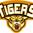 Tiger sports mascot head front — Stock Photo