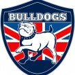Royalty-Free Stock Photo: English bulldog british rugby sports team mascot