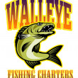 Walleye fishing charters — Stock Photo