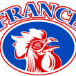 Rugby rooster mascot france — Stock Photo