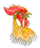 Rooster or cockerel sketch — Stock Photo